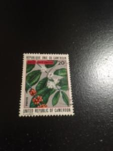 Cameroun sc 559 u Flower
