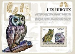 COMORES 2009 SHEET OWLS HIBOUX EULEN BUHOS CORUJAS BIRDS AVES PASSAROS cm9113b