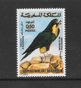 BIRDS - MOROCCO #308  MNH
