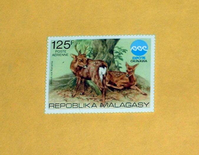 Madagascar - C145, MNH Complete Issue - Deer. SCV - $1.90
