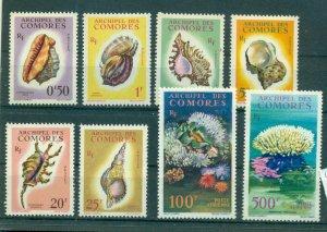 Comoro Is. - Sc# 48/C6. 1962 Sea Shells. MNH $69.00.