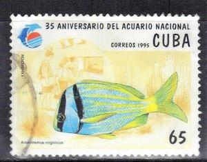 CUBA SCOTT# 3622 **USED** 1995  65c     SEE SCAN