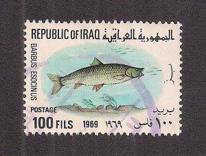 IRAQ SC# 494   FVF/U 1969