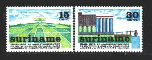 Suriname. 1974. 673-74. Agriculture, pollination of plants. MNH.