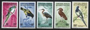 Afars & Issas 414-418 MNH Birds: Hamerkop Namaqua Dove 1975 short set x18979