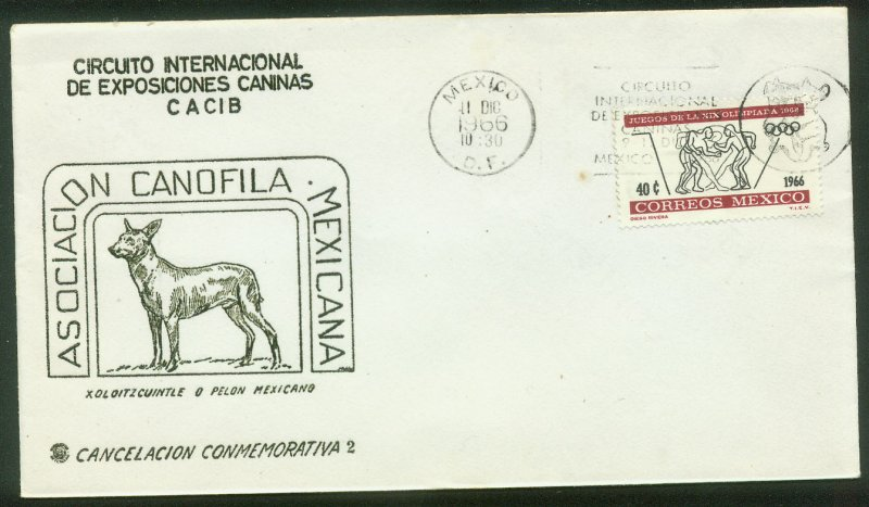 MEXICO 975, DOG SHOW, COVER WITH SPECIAL POSTMARK VF. (88)