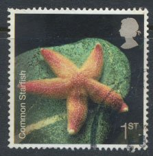 Great Britain SG 2700 SC# 2429  Used Common Starfish  see details