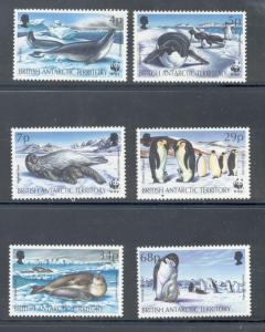 British Antarctic Terr Sc 192-7 1992 Seals Pen stamp set NH