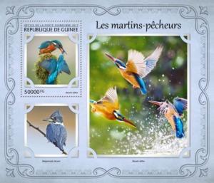 Guinea - 2017 Kingfishers on Stamps - Stamp Souvenir Sheet - GU17116b