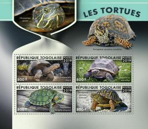 Z08 TG190127a TOGO 2019 Turtles MNH ** Postfrisch