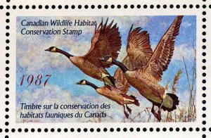 CANADA 1987 DUCK STAMP MINT IN FOLDER AS ISSUED CANADIAN GEESE by George McLean