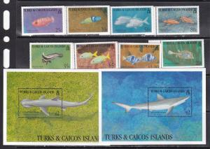 Turks and Caicos 1994 fish marine life fauna set+2s/s MNH