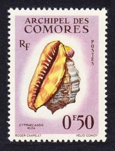 Comoro Is. Sea Shell Cypraecassis rufa 1v 50c SG#23 SC#48 MI#42