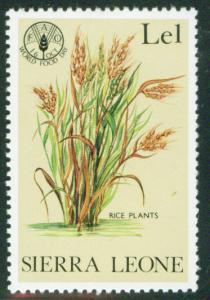 Sierra Leone Scott 529 MNH** 1981 Rice stamp