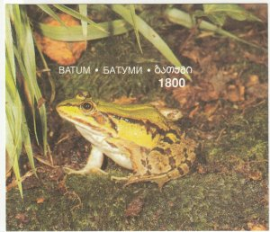 Batum; Local Issue, 1800 Val, Tropical Frog Imperf Sheetlet MNH, Animals