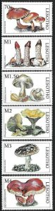 1998 Lesotho Mushrooms, Funghi, Champignons complete set VF/MNH! BEAUTIFUL!