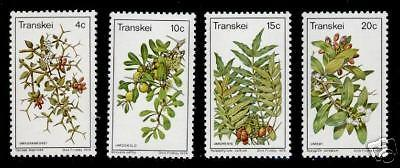 Transkei 28-31 MNH Flowers, Berries, Edible Fruits