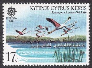 CYPRUS SCOTT 670