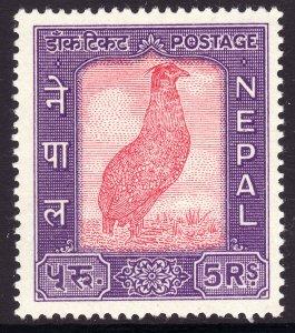 1960 Nepal admission into UPU 5r Satyr tragopan issue MNH Sc# 117 CV $100.00