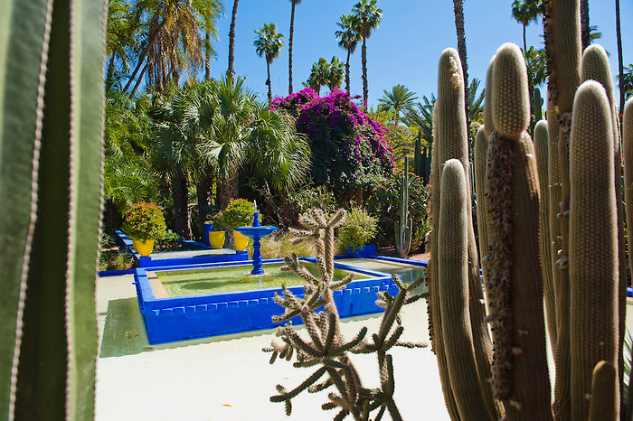 Blue fountain and cactus at Majorelle