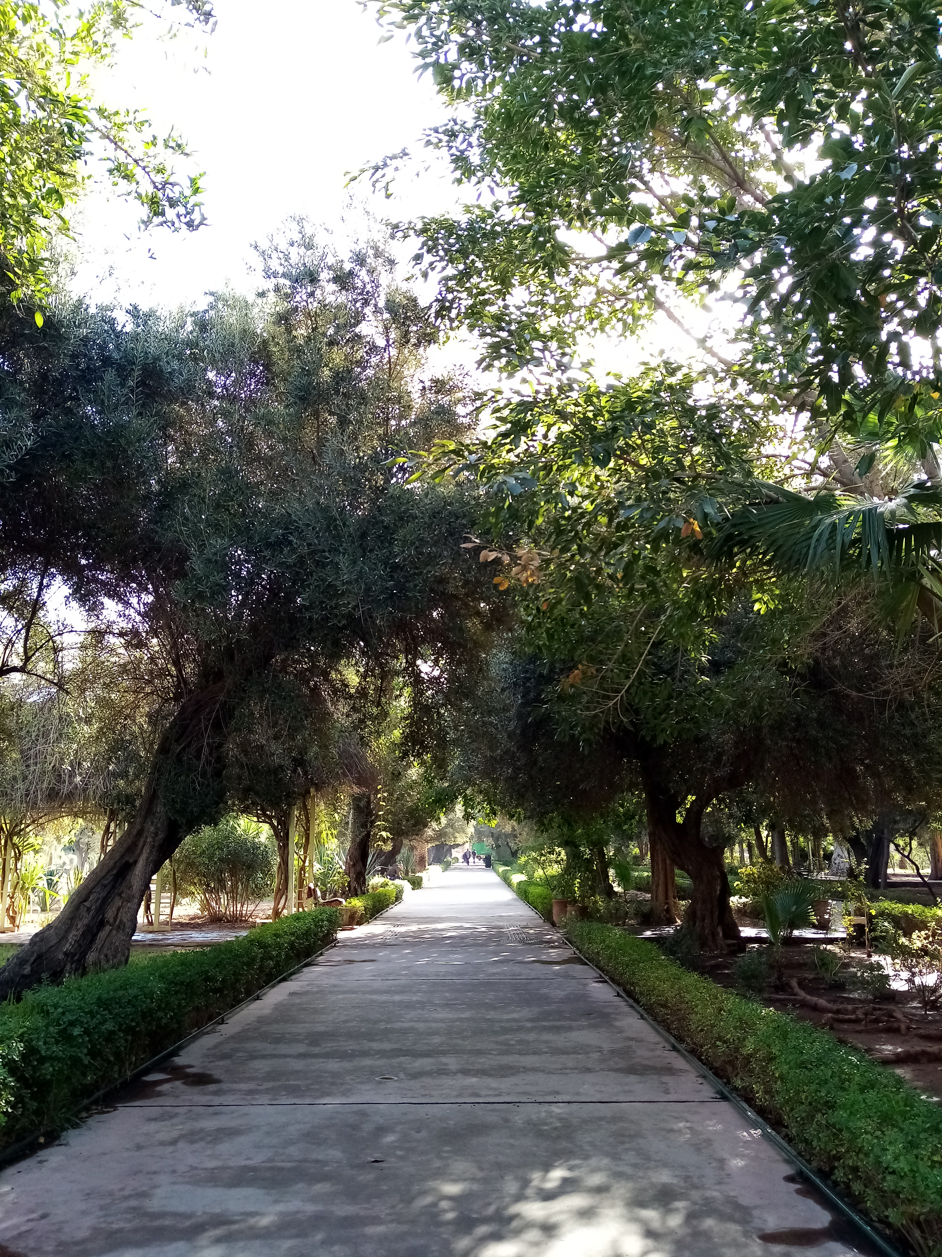 Harti Roads
