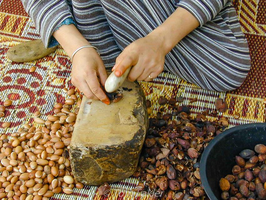 Pulping Argan fruits