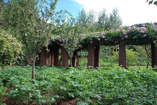 Timalizene Garden