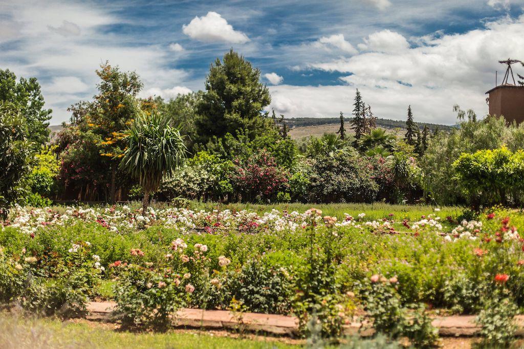 Ourika Bio-Aromatic Garden