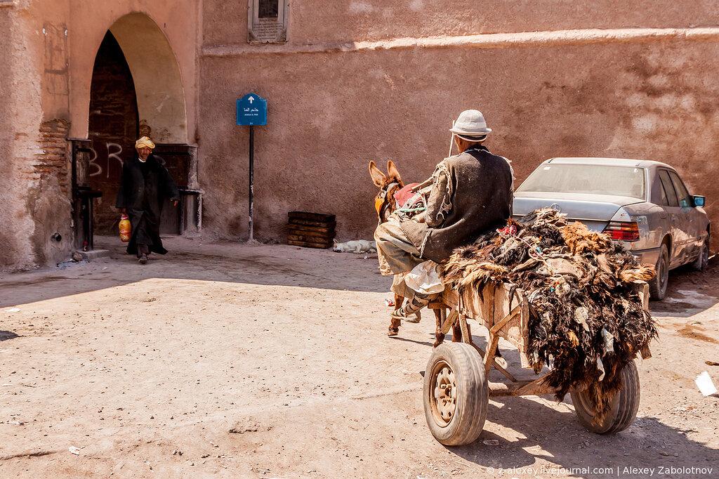 donkey carts transporting skins of goats