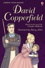 738 亞馬遜五星好書 Usborne Young Reading Stories -- David Copperfield [課外書]