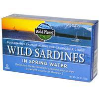 Wild California Sardines in Spring Water (125g) 野生加州沙丁魚(泉水)