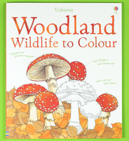 #1880 【推介】Usborne Wildland to Colour ,填色畫冊