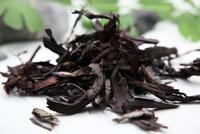 紫草精油-缺貨