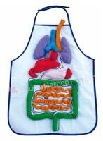 人體消化系統內臟#180323
