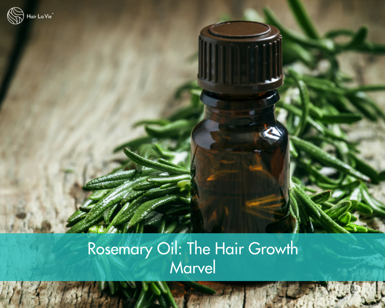 The Amazing Benefits of Rosemary Oil: Hair Growth, Dandruff, and Grays