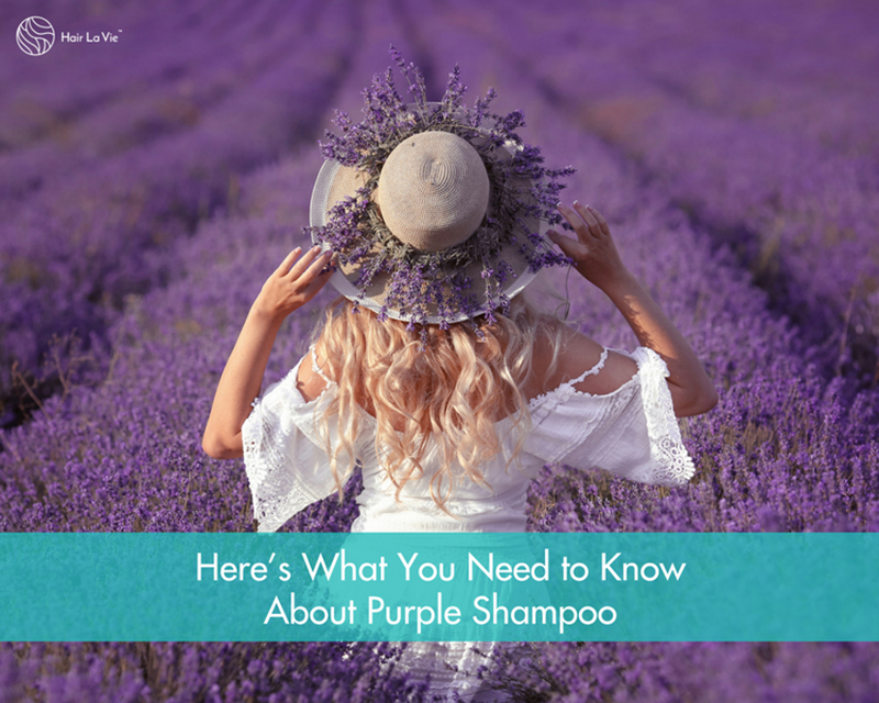 Why Beautiful Blonde Hair Needs Purple Shampoo: Shampoo Guide and Tips