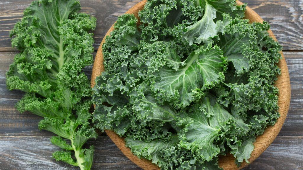 Healthy kale & egg wrap