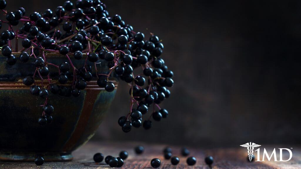 7 Health Benefits of Elderberry + Potential Dangers and Side Effects