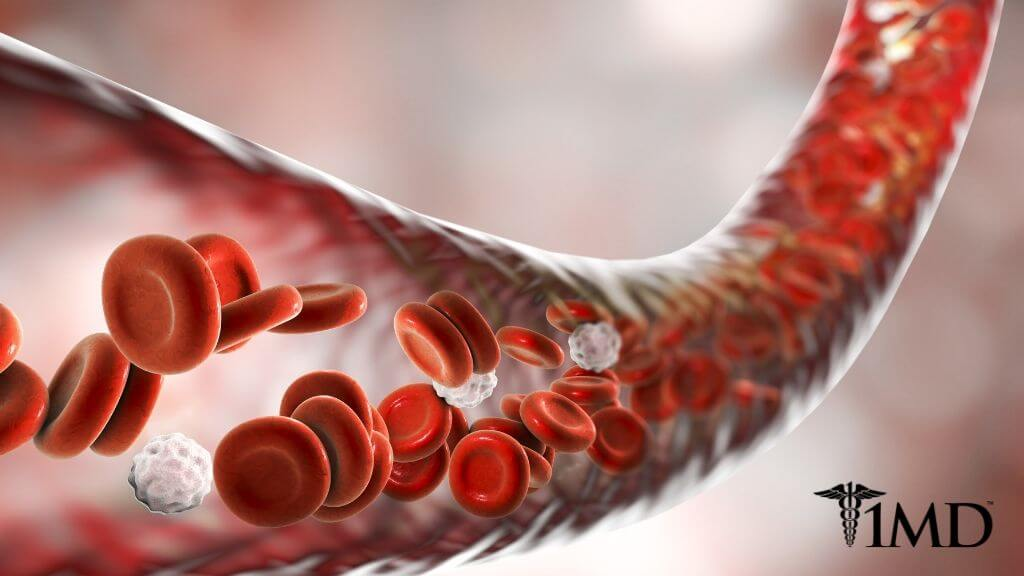 The 5 Best Natural Blood Thinners to Help Prevent Dangerous Clots