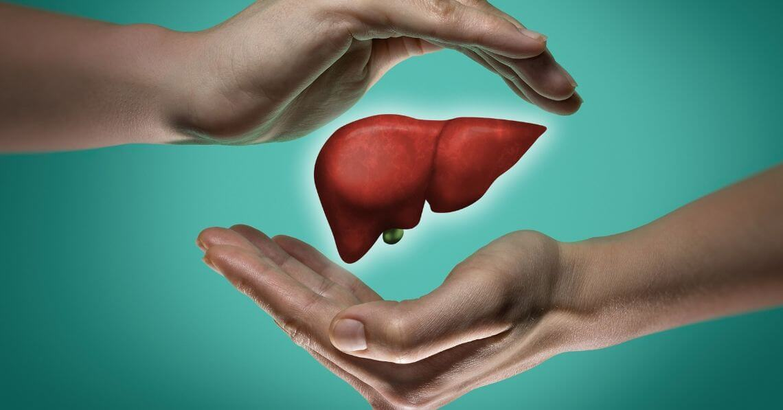 Is Your Liver Healthy? What to Know and How to Maintain a Healthy Liver