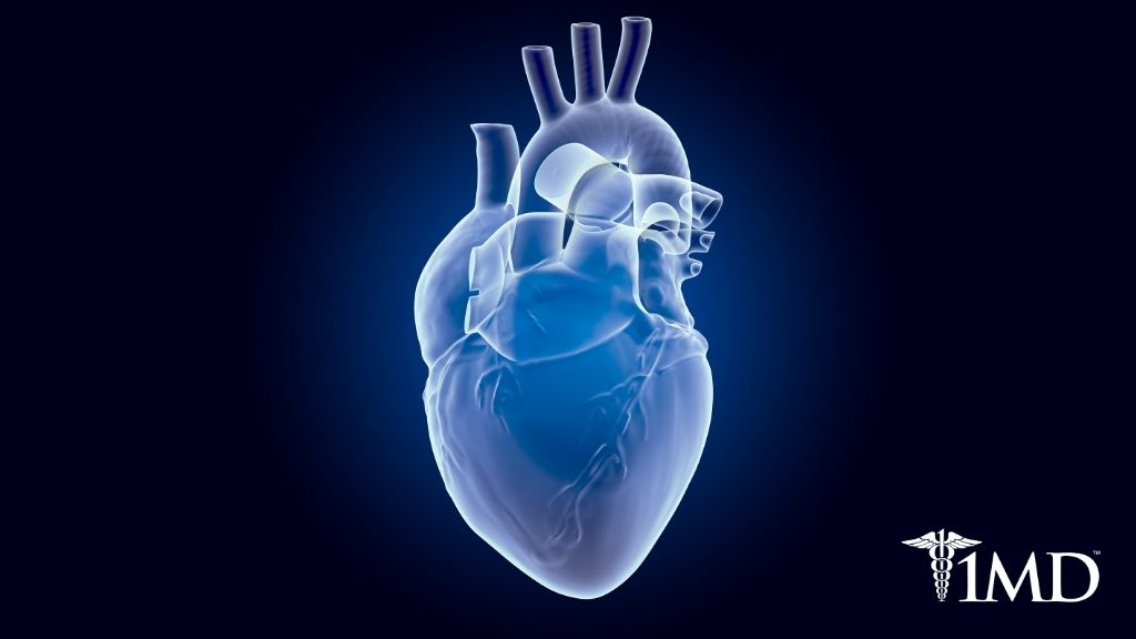 Heart Disease and You: Risks, Treatment, Prevention, and More