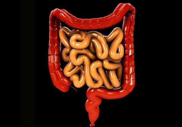 Constipation: Causes, Diagnosis, and Natural Treatments