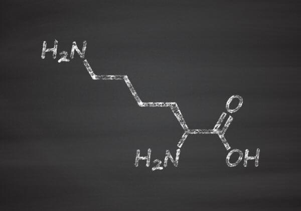 L-Lysine: Benefits, the Right Dosage, and Warnings
