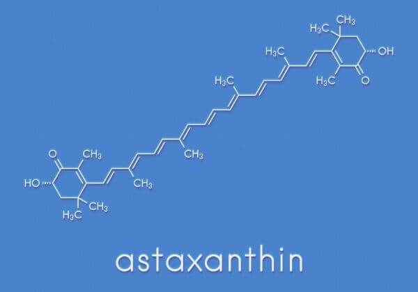 What Is Astaxanthin and Why Should It Be In Your Krill Oil