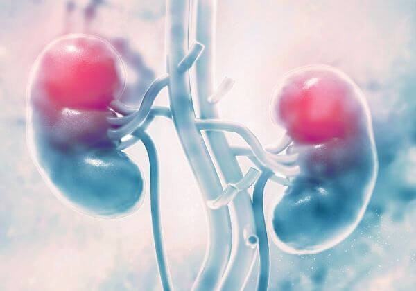 What Is Kidney Failure? - Men's Health - 1MD