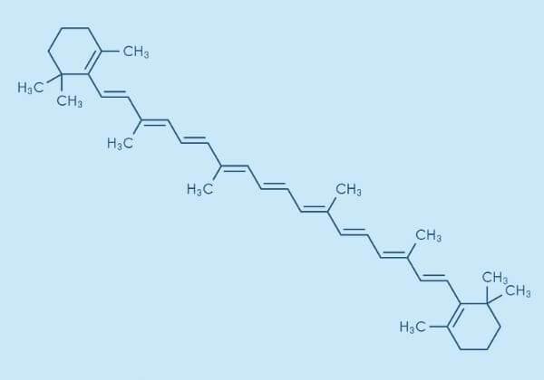 EVTene: The Benefits, Dosage Information, and Tips