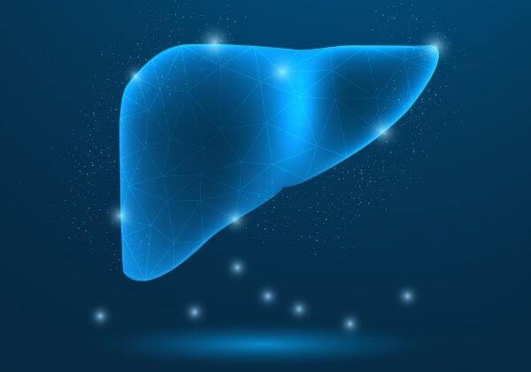 L-Cysteine: Health Benefits and Dosage Information