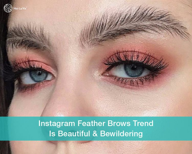 Feather Brows Make Bold Statement As Hot New Instagram Trend