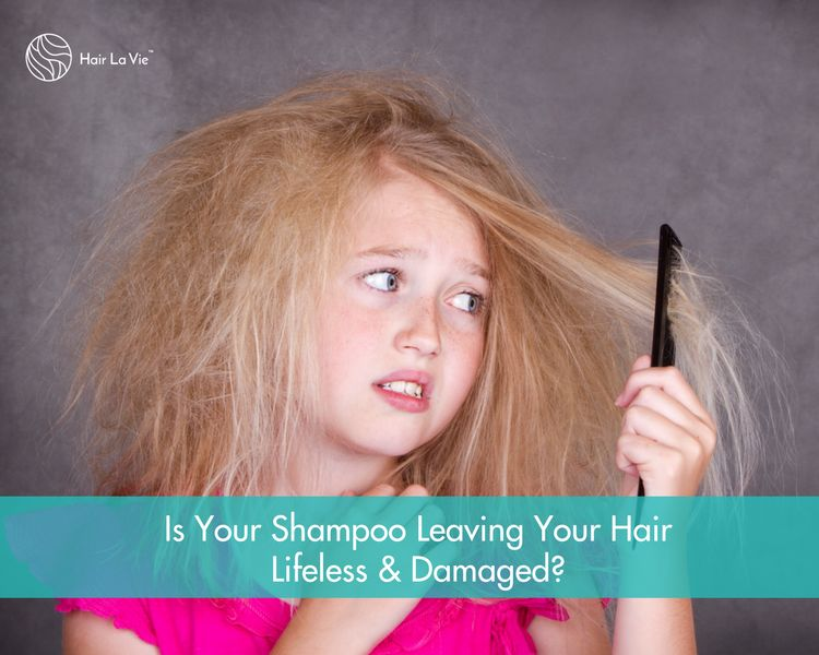 What's In Your Shampoo?