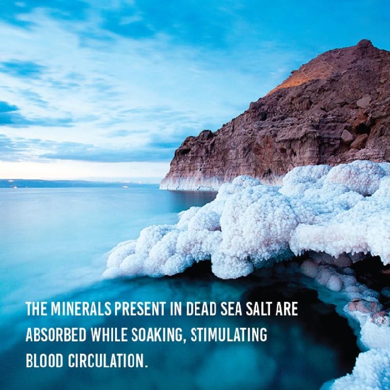 Seesee Dead Sea Mineral Mud Treatment Shampoo 250ml